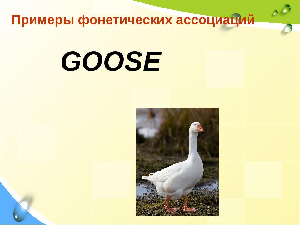 Примеры фонетических ассоциаций GOOSE