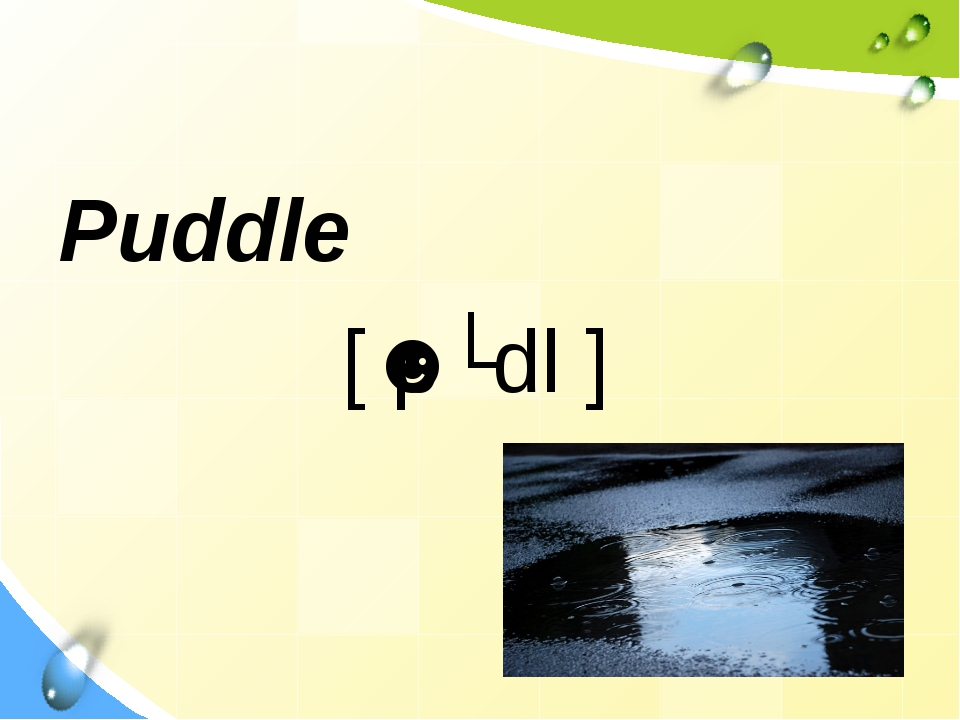 Puddle [ˈpʌdl ]
