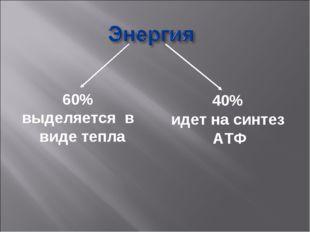 60% выделяется в виде тепла 40% идет на синтез АТФ