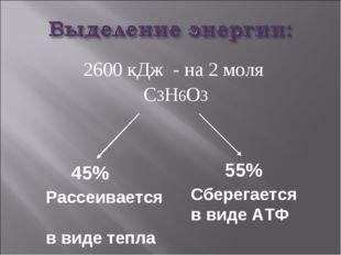 2600 кДж - на 2 моля С3Н6О3 45% Рассеивается в виде тепла Сберегается в виде