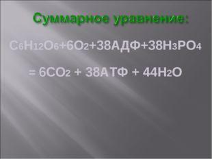 С6Н12О6+6О2+38АДФ+38Н3РО4 = 6СО2 + 38АТФ + 44Н2О