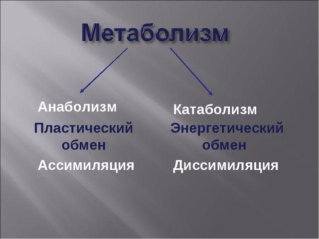 Пластический обмен Ассимиляция Анаболизм Энергетический обмен Диссимиляция К...