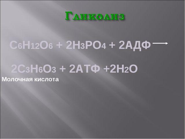 С6Н12О6 + 2Н3РО4 + 2АДФ 2С3Н6О3 + 2АТФ +2Н2О Молочная кислота