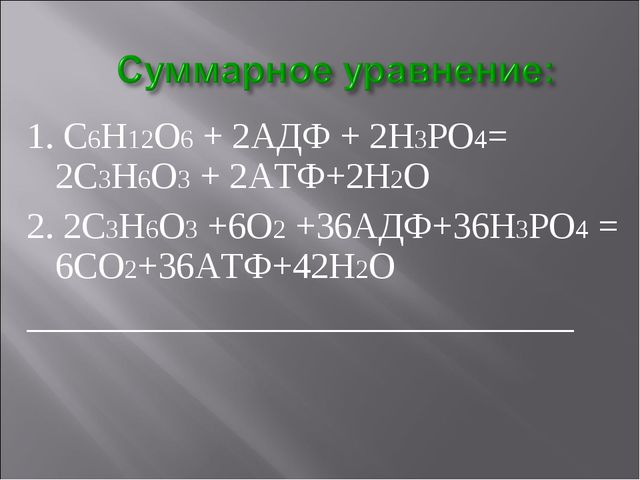 1. С6Н12О6 + 2АДФ + 2Н3РО4= 2С3Н6О3 + 2АТФ+2Н2О 2. 2С3Н6О3 +6О2 +36АДФ+36Н3РО...