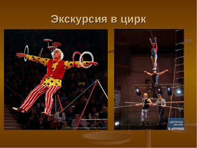 Экскурсия в цирк