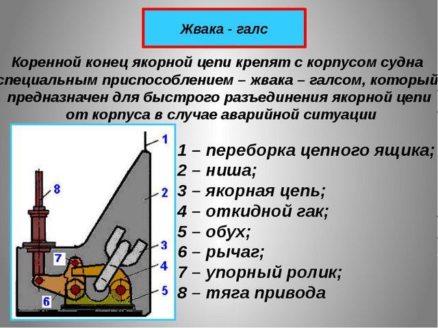 Жвака - галс Коренной конец якорной цепи крепят с корпусом судна специальным...