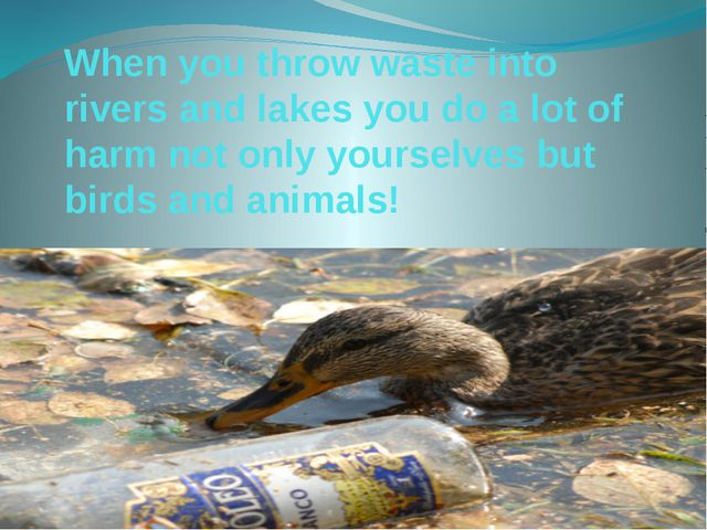 When you throw waste into rivers and lakes you do a lot of harm not only your...