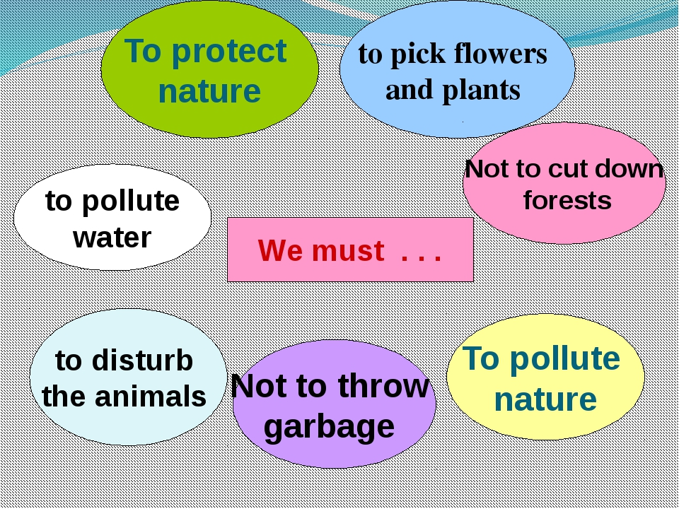 We must . . . To protect nature to pick flowers and plants Not to cut down fo...