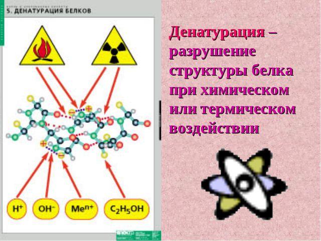 Денатурация – разрушение структуры белка при химическом или термическом возде...