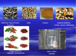 семечки подсолнуха (сырые) овес пшено семена арбуза, тыквы, дыни, кабачков яг