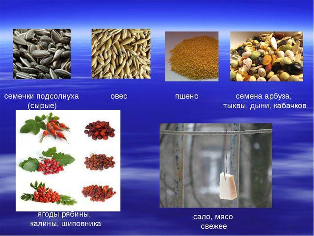 семечки подсолнуха (сырые) овес пшено семена арбуза, тыквы, дыни, кабачков яг...