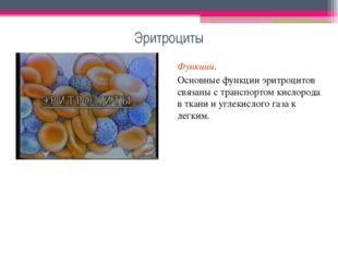Эритроциты Функции. Основные функции эритроцитов связаны с транспортом кислор