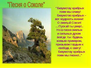 """""""Безумству храбрых поем мы славу! Безумство храбрых – вот мудрость жизни! О с"""