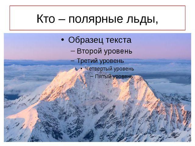 Кто – полярные льды,