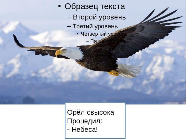 Орёл свысока Процедил: - Небеса!