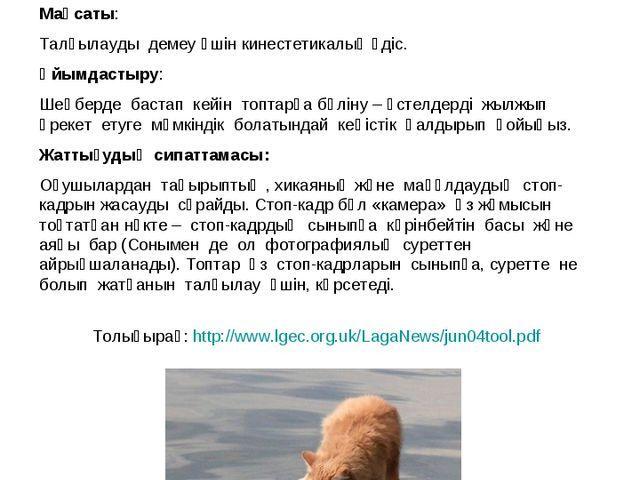 Стоп-кадр Толығырақ: http://www.lgec.org.uk/LagaNews/jun04tool.pdf Мақсаты: Т...