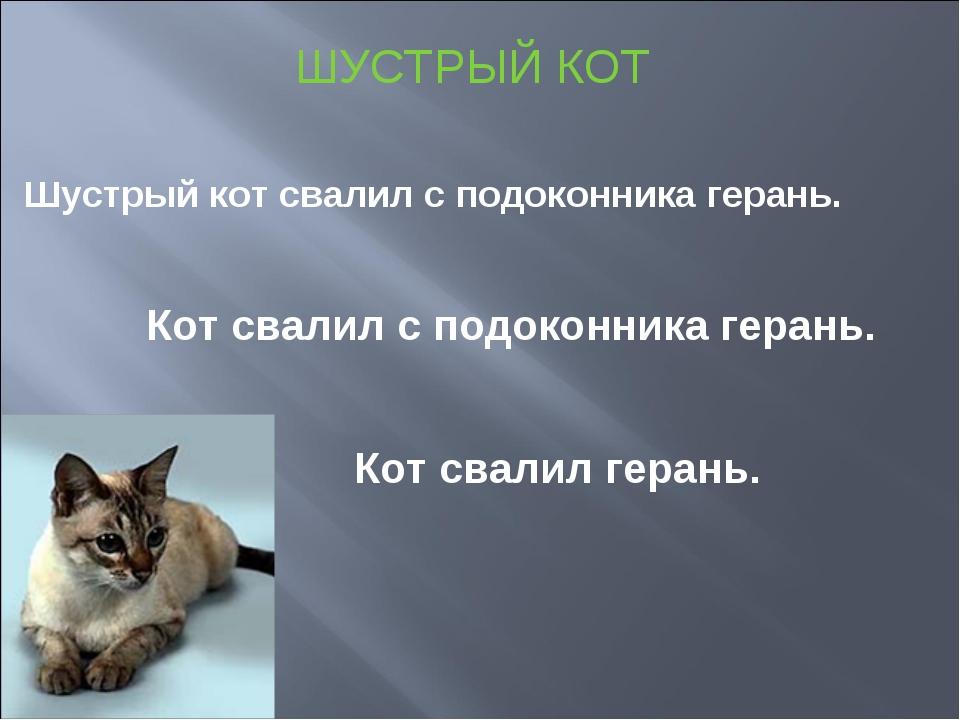 ШУСТРЫЙ КОТ Шустрый кот свалил с подоконника герань. Кот свалил с подоконника...