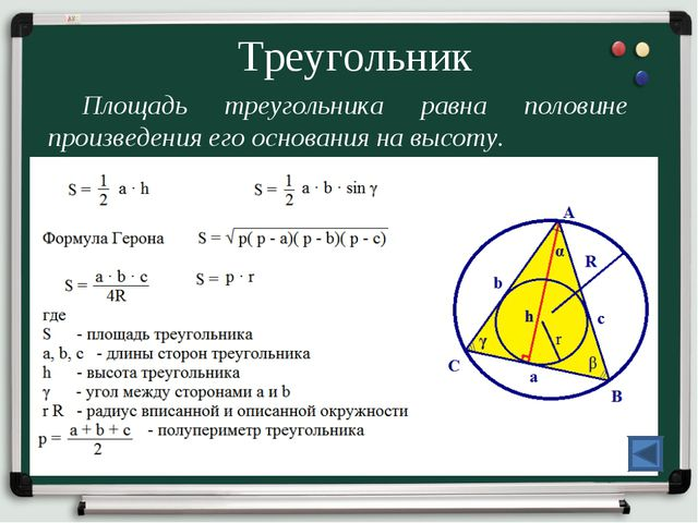 Треугольник Площадь треугольника равна половине произведения его основания на...