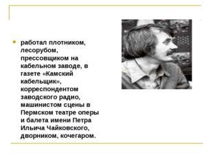 работал плотником, лесорубом, прессовщиком на кабельном заводе, в газете «Кам