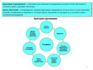 Критерии оценивания – описание достижения планируемых результатов обучения в