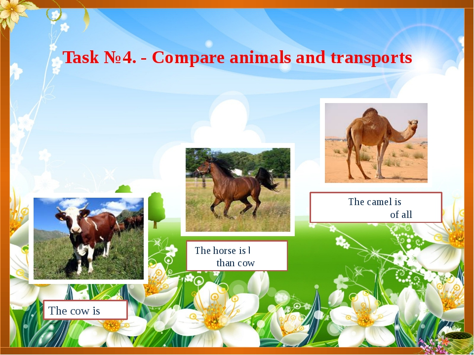 Task №4. - Compare animals and transports The camel is the biggest of all The...