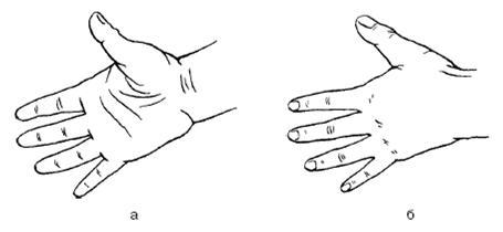 http://www.e-reading.life/illustrations/71/71937-pic_8.jpg