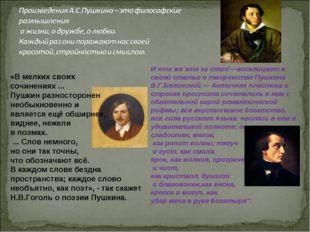 «В мелких своих сочинениях ... Пушкин разносторонен необыкновенно и является