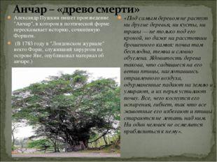 """Александр Пушкин пишет произведение """"Анчар"""", в котором в поэтической форме пе"""