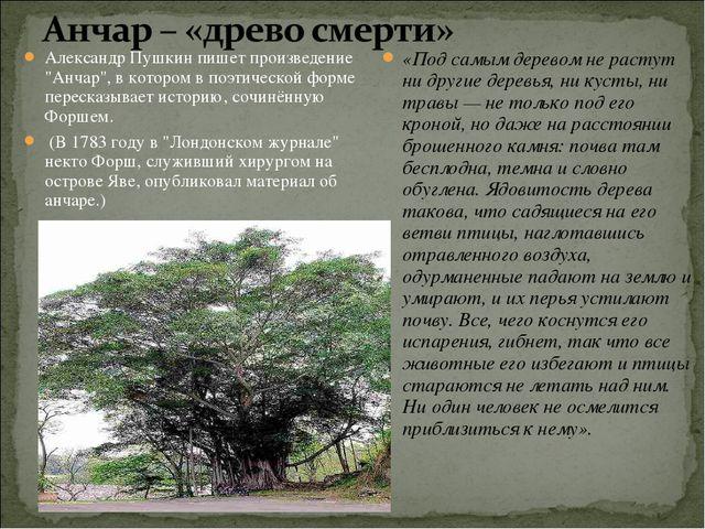 """Александр Пушкин пишет произведение """"Анчар"""", в котором в поэтической форме пе..."""