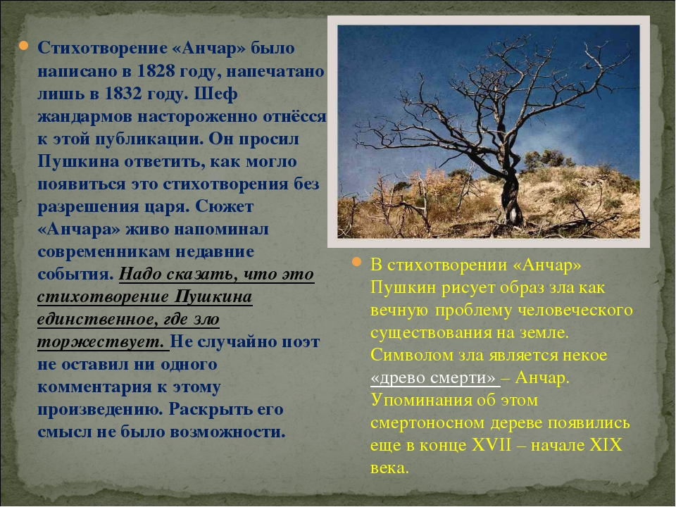 Стихотворение «Анчар» было написано в 1828 году, напечатано лишь в 1832 году....