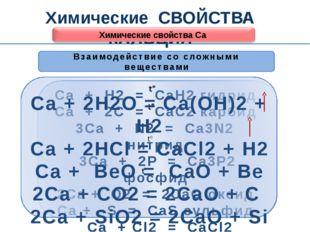 Химические СВОЙСТВА КАЛЬЦИЯ Химические свойства Са Взаимодействие с простыми