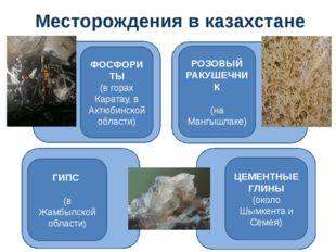 Месторождения в казахстане ФОСФОРИТЫ (в горах Каратау, в Актюбинской области)