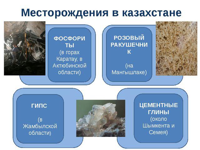 Месторождения в казахстане ФОСФОРИТЫ (в горах Каратау, в Актюбинской области)...