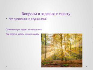 Вопросы и задания к тексту. Что произошло на опушке леса? Солнечные лучи пада