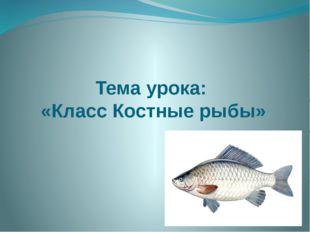 Тема урока: «Класс Костные рыбы»