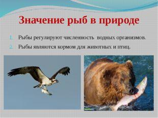 Значение рыб в природе Рыбы регулируют численность водных организмов. Рыбы яв