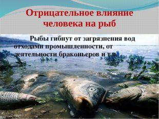 Отрицательное влияние человека на рыб Рыбы гибнут от загрязнения вод отход