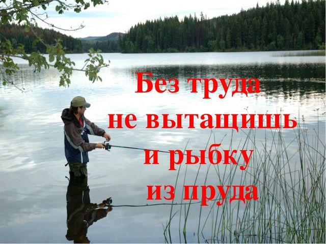 Без труда не вытащишь и рыбку из пруда