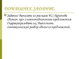 ДОМАШНЕЕ ЗАДАНИЕ. Задание: выписать из рассказа И.С.Тургенева «Бежин луг» сло