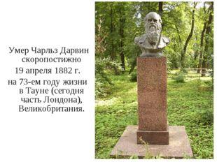 Умер Чарльз Дарвин скоропостижно 19 апреля 1882 г. на 73-ем году жизни в Тау