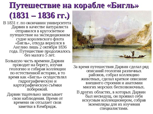 Путешествие на корабле «Бигль» (1831 – 1836 гг.) В 1831 г. по окончании униве...