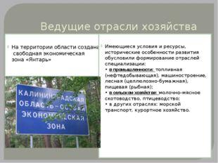 Ведущие отрасли хозяйства На территории области создана свободная экономическ