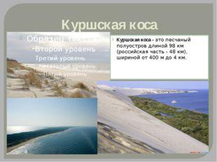 Куршская коса Куршская коса -это песчаный полуостров длиной 98 км (российска