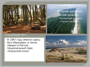 В 1987 году именно здесь был образован, в числе первых в России, Национальны