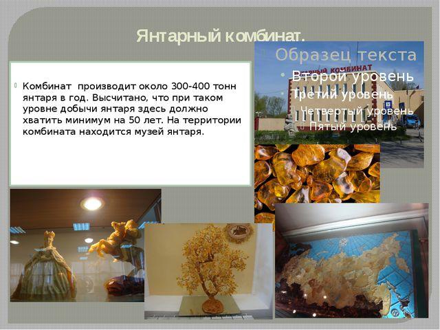 Янтарный комбинат. Комбинат производит около 300-400 тонн янтаря в год. Высч...