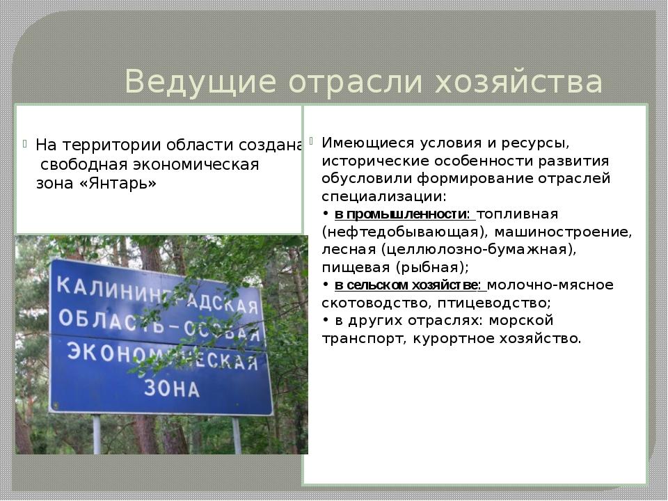 Ведущие отрасли хозяйства На территории области создана свободная экономическ...