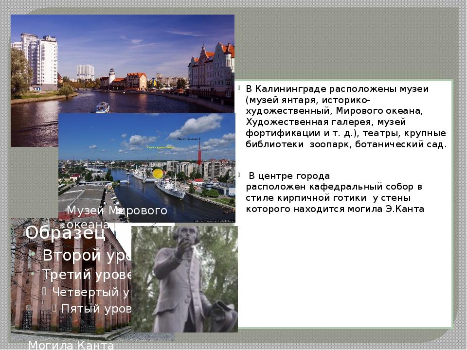 В Калининграде расположены музеи (музей янтаря, историко-художественный,Мир...