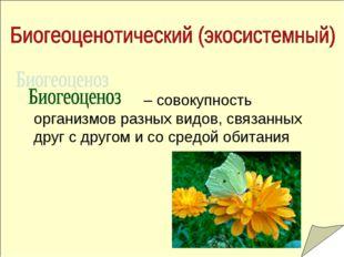 – совокупность организмов разных видов, связанных друг с другом и со средой