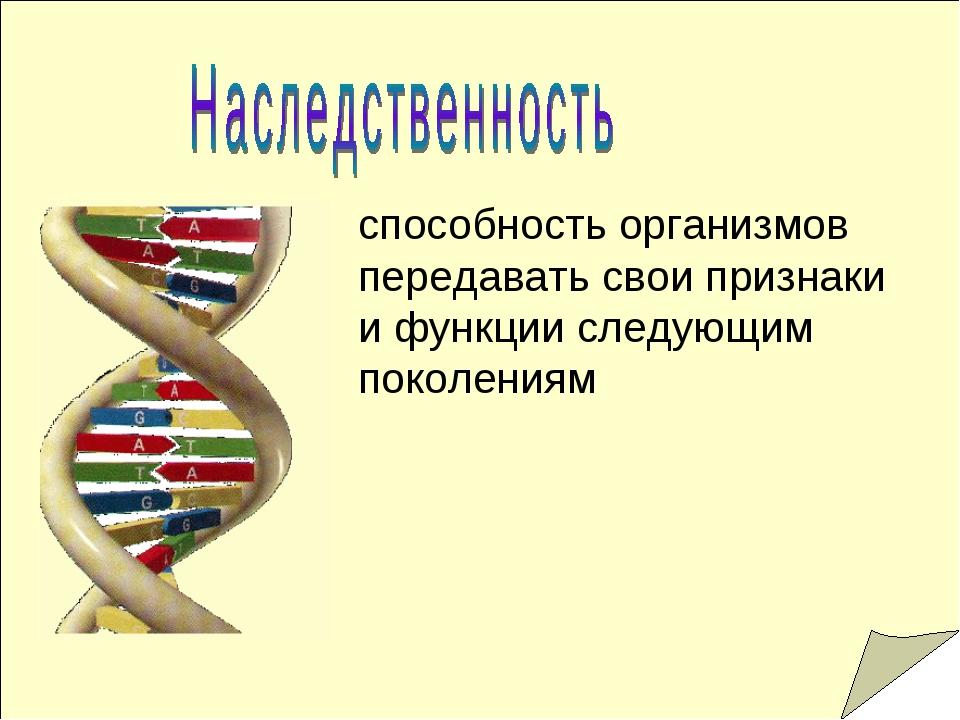 способность организмов передавать свои признаки и функции следующим поколениям