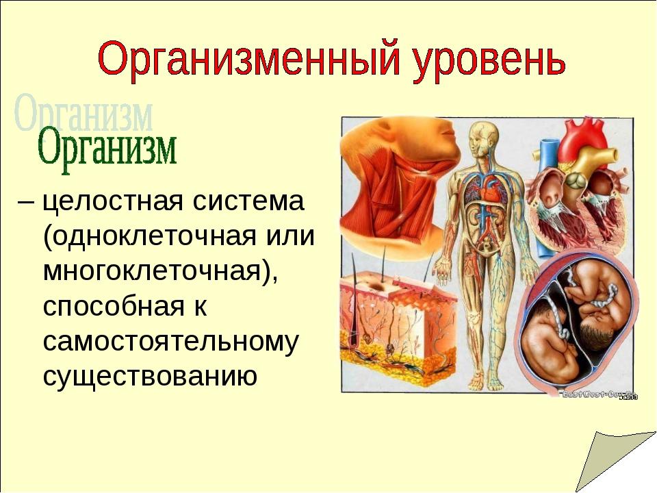 – целостная система (одноклеточная или многоклеточная), способная к самостоя...